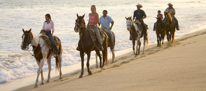 Horseback Riding and Baby Turtle Release